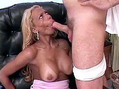 Exotic tgirl blowing dick