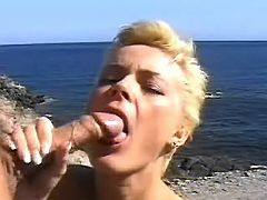 Wild BJ on the sea shore
