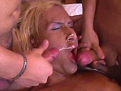 TS gets facial from cocks